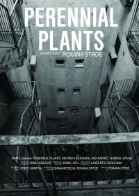 Plante Perene Poster A3jpg-01