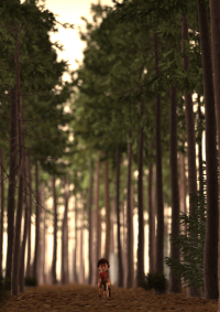 r__s13__c12_pineforest__-0011
